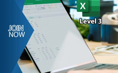 Microsoft Office Excel 2016 – Level 3